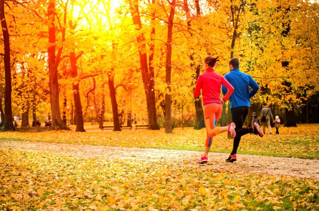 Fall into Fitness Tips